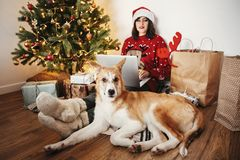 Happy girl in santa hat working on laptop and sitting with cute royalty free stock photos