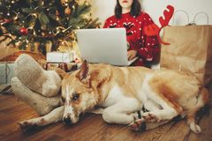 Happy girl in santa hat working on laptop and sitting with cute royalty free stock photography