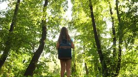 Happy girl traveler with a backpack spins in forest spreading his arms in different directions and meditates. Hiker stock footage