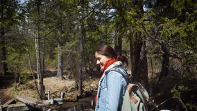 Happy girl traveler walks through the wild forest. Dressed in a jeans hiking jacket and hiking backpack. A dense forest. Of pines and other trees. Travel alone stock video