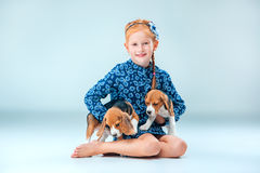 The happy girl and two beagle puppie on gray background. The happy girl and the two beagle puppie on gray background Royalty Free Stock Images