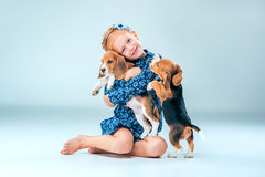 The happy girl and two beagle puppie on gray background. The happy girl and the two beagle puppie on gray background Royalty Free Stock Photography