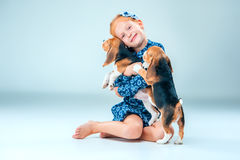 The happy girl and two beagle puppie on gray background. The happy girl and the two beagle puppie on gray background Stock Photos