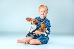 The happy girl and two beagle puppie on gray background. The happy girl and the two beagle puppie on gray background Stock Photography