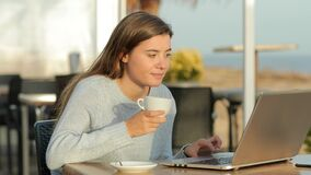 Girl using laptop and drinking in a coffee shop stock video footage
