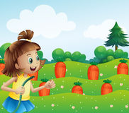 A happy girl watering the carrots in the farm Royalty Free Stock Photography