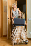 Happy girl in wheelchair  working on laptop Royalty Free Stock Images