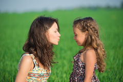 Happy girls kissing on green grass. Happy girls kissing over green grass at spring or summer park picnic Stock Images