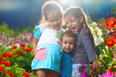 Happy girls on the meadow Stock Photography