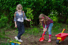 Happy girls planting tree Royalty Free Stock Photos