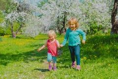 Happy girls play run in spring nature, apple blossom, seasonal activities. Happy little girls play run in spring nature, apple blossom, seasonal activities stock photo