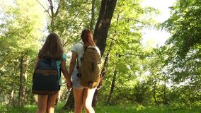 Happy girls travelers with backpacks go through the thicket in the forest. children tourists travel in the summer park stock video footage