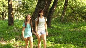 Happy girls travelers go with backpacks in the forest. Hiker woman walks in the forest. happy hiker girl in summer park stock footage