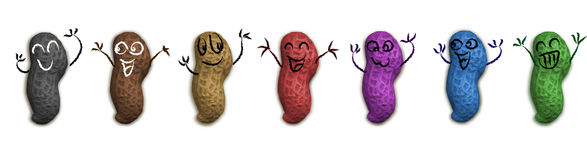 Happy GM peanuts. Happy smiling colored peanuts. Are they Genetically Modified Ingredients vector illustration