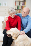 Happy golden retriever with its elderly owners Stock Photo