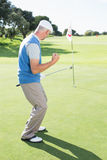 Happy golfer cheering on putting green at eighteenth hole Stock Images