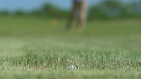Happy golfer making shot and putting ball into hole, success, victory, close-up. Stock footage stock footage