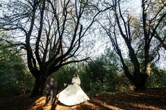 Happy gorgeous bride and stylish groom holding hands and walking. In sunny forest park Stock Images
