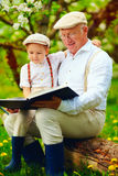 Happy grandfather and grandson reading book at spring apple garden Stock Image