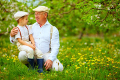 Happy grandfather and grandson in spring garden Stock Photography