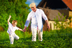 Happy grandfather and grandson walking among potato rows at their homestead Royalty Free Stock Images