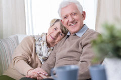 Happy grandma and grandpa. Sitting on the sofa stock images