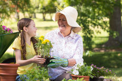 Happy grandmother with her granddaughter gardening. On a sunny day Royalty Free Stock Photo