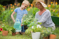 Happy grandmother with her granddaughter gardening Stock Image