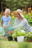 Happy grandmother with her granddaughter gardening. On a sunny day Stock Photo