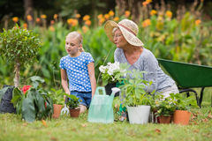 Happy grandmother with her granddaughter gardening Royalty Free Stock Image
