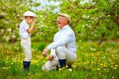 Happy grandpa with grandson blowing dandelions in spring garden Stock Image