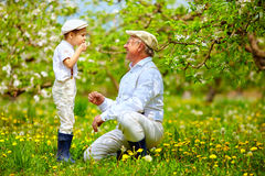 Happy grandpa with grandson blowing dandelions in spring garden Royalty Free Stock Photography