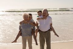 Happy grandparents giving piggyback to grandchildren on beach. Front view of happy grandparents giving piggyback to grandchildren on beach in the sunshine royalty free stock image