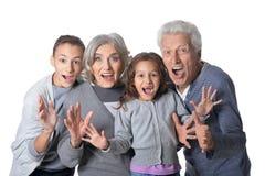 Happy grandparents with grandchildren. Portrait of happy grandparents with grandchildren isolated on white background royalty free stock photos