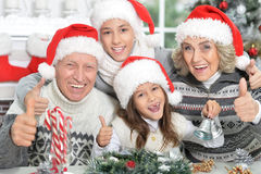 Happy grandparents with grandchildren Royalty Free Stock Images