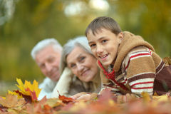 Happy grandparents with grandson Royalty Free Stock Images