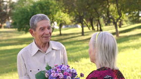 Happy grandparents at the park for a walk. stock footage