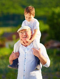 Happy grandson sitting on shoulders of grandpa, countryside Royalty Free Stock Images