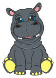 Happy gray hippo Royalty Free Stock Photo