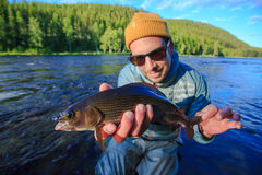 Happy grayling. Hapy looking grayling  had in fact been injured in the past with some kind of lure or fly. Caught on river in Sweden Stock Image