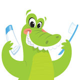 Happy crocodile holding toothbrush and toothpaste. Happy green crocodile is smiling while holding a toothbrush and a toothpaste Royalty Free Stock Photo