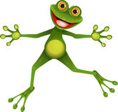 Happy green frog Stock Photo