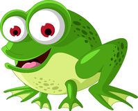Happy green frog cartoon Stock Photo