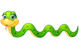 Happy green snake cartoon Stock Image