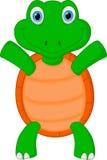 Happy green turtle cartoon Stock Photos