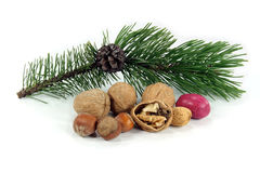 Happy Greeting Seasons - get your Good Luck. Symbols of Christmas and New Year. Christmas decoration. The good meat of the walnut broken in first minutes of the Royalty Free Stock Photography