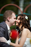 Happy groom and bride Stock Image