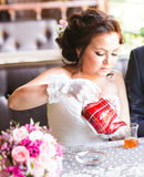 Happy groom and bride  together in cafe having fun. Happy newlywed couple at wedding Royalty Free Stock Image