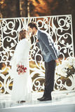 Happy groom and bride together. Stock Image