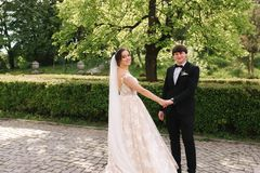 Happy groom and bride walking in the park. Charming woman with handsome man spend time together. Happy groom and bride walking in the park. Charming women with royalty free stock images